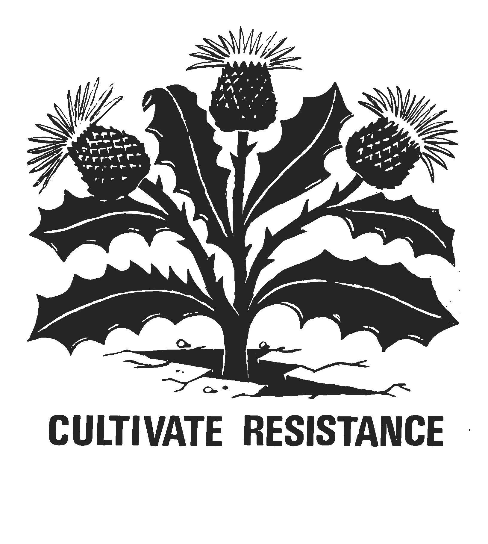 """Dandelion growing out of concrete with words that say """"Cultivate Resistance"""""""